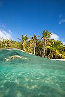Split level image of Salomon Beach<br /> Virgin Islands National Park<br /> St. John, U.S. Virgin Islands