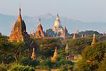 Myanmar (Burma), Mandalay-Division, Bagan: View over ancient temples | Myanmar (Birma), Mandalay-Division, Bagan: Blick ueber die Bagan Tempeln, die zwischen dem 11. und 13. Jahrhundert erbaut wurden