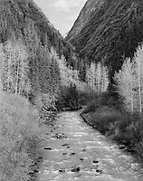 """Creek"" <br /> Along the Richardson Highway, Alaska <br /> <br /> The Richardson Highway provides drivers with spectacular scenery between Valdez and Fairbanks, Alaska. This black and white photograph shows a creek on the Richardson Highway about 20 miles north of Valdez."