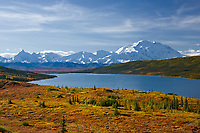 A stunning array of fall colors decorate the tundra near Wonder Lake. Denali is prominent in the background.