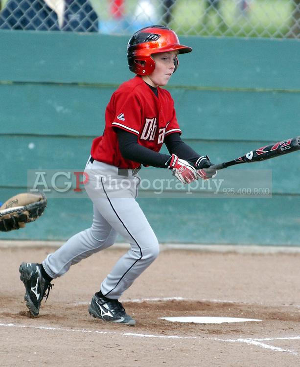 The Major Diamonbacks of Pleasanton National Little League April 8, 2009.