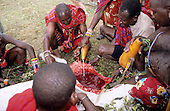 Lolgorian, Kenya. Siria Maasai; mixing milk with the blood of the sacrificed bull for the Eunoto coming of age ceremony.