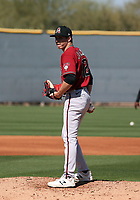 Drey Jamison - Arizona Diamondbacks 2020 spring training (Bill Mitchell)