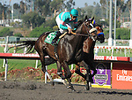 October 2, 2010.Zenyatta riden by Mike Smith wins the Lady's Secret Stakes at Hollywood Park, Inglewood, CA._Cynthia Lum/Eclipse Sportswire.com