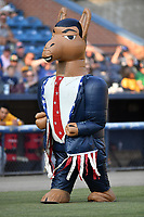 Zooperstars Barack Ollama during a game between the West Virginia Power and the Asheville Tourists at McCormick Field on June 1, 2019 in Asheville, North Carolina. The  Tourists defeated the Power 16-1. (Tony Farlow/Four Seam Images)