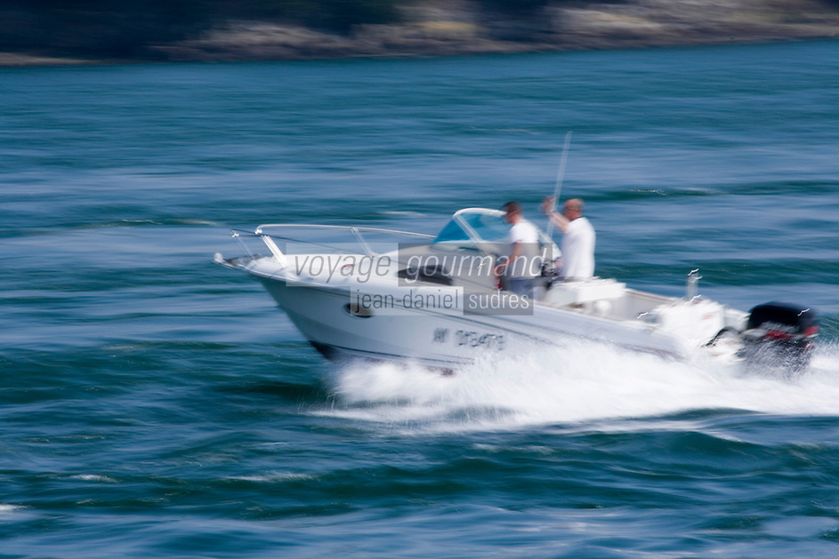 Europe/France/Bretagne/56/Morbihan/Golfe du Morbihan:Vedette  à moteur sur le golfe