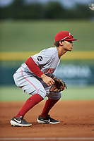AZL Reds third baseman Sebastian Almonte (16) during an Arizona League game against the AZL Cubs 2 on July 23, 2019 at Sloan Park in Mesa, Arizona. AZL Cubs 2 defeated the AZL Reds 5-3. (Zachary Lucy/Four Seam Images)