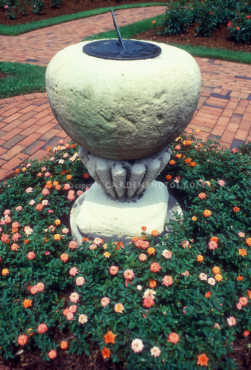 Rosa 'Rainbow's End' miniature roses yellow and red, around concrete sundial, brick path, garden use, orange, red, yellow multicolored flowers
