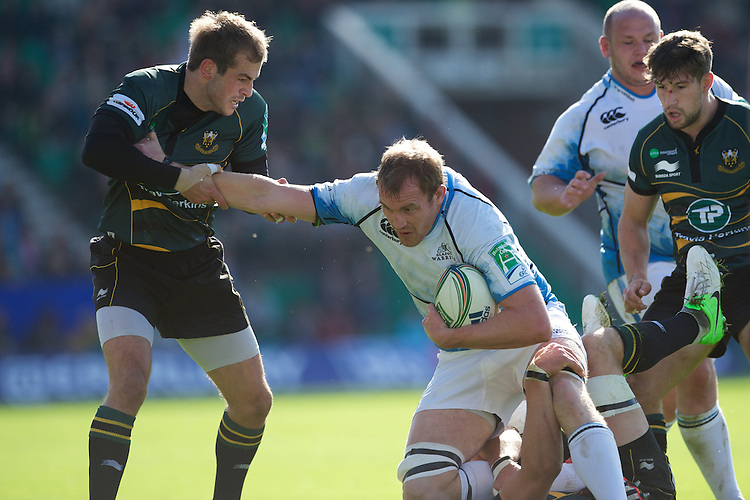 Stephen Myler of Northampton Saints (left) gets to grips with Al Kellock of Glasgow Warriors during the Heineken Cup match between Northampton Saints and Glasgow Warriors  at Franklin's Gardens on Sunday 14th October 2012 (Photo by Rob Munro)