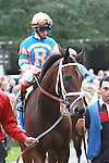 Heavy favorite Uncle Mo with John Velazquez aboard beat older in the Grade II Kelso for 3 year olds & up, at 1 mile, at Belmont Park