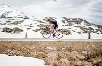 Alessandro Covi (ITA/UAE-Emirates) up the Passo San Bernardino (2065m/SUI)<br /> <br /> 104th Giro d'Italia 2021 (2.UWT)<br /> Stage 20 (through Switzerland) from Verbania to Valle Spluga-Alpe Motta (164km)<br /> <br /> ©kramon