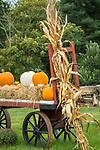 Bishops Farm Market, fall displays. Guilford, CT. Wagon display.
