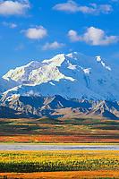 North Face Of 20, 3020+ Ft. Mt. Denali Autumn Tundra And Mckinley River Bar, Denali National Park, Alaska.