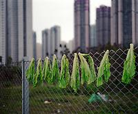 The back door, Architektur, Neubausiedlung fuer 600000 Menschen, Hochhaus, Siedlung, Salat, Zaun, Hongkong, China, Zaun, Maschendrahtzaun<br /> <br /> English: Hong Kong, the back door. new satellite cites, built to house 600,000 people. architecture of density. lettuce is drying on a fence, Hong Kong Flora.<br /> HKFDBD page 90-91<br />  ***Keine Social_Media Nutzung***