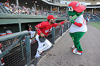 Second baseman Wendell Rijo (11) of the Greenville Drive bumps fists with mascot Reedy Rip'It as he is introduced before a game against the Lexington Legends on Sunday, August 31, 2014, at Fluor Field at the West End in Greenville, South Carolina. Rijo is the No. 18 prospect of the Boston Red Sox, according to Baseball America. Greenville won, 3-2. (Tom Priddy/Four Seam Images)