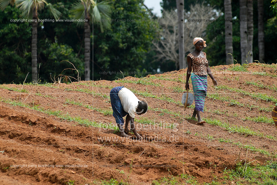 "Afrika Westafrika Burkina Faso .Frauen hacken den Boden traditionell mit der Hacke -  Landwirtschaft xagndaz | .Africa west-africa Burkina Faso women prepare the soil with chop during raining season for sowing.  -  agriculture .| [ copyright (c) Joerg Boethling / agenda , Veroeffentlichung nur gegen Honorar und Belegexemplar an / publication only with royalties and copy to:  agenda PG   Rothestr. 66   Germany D-22765 Hamburg   ph. ++49 40 391 907 14   e-mail: boethling@agenda-fototext.de   www.agenda-fototext.de   Bank: Hamburger Sparkasse  BLZ 200 505 50  Kto. 1281 120 178   IBAN: DE96 2005 0550 1281 1201 78   BIC: ""HASPDEHH"" ,  WEITERE MOTIVE ZU DIESEM THEMA SIND VORHANDEN!! MORE PICTURES ON THIS SUBJECT AVAILABLE!! ] [#0,26,121#]"