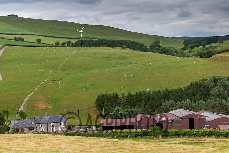 Welsh agricultural landscape<br /> Picture Tim Scrivener 07850 303986