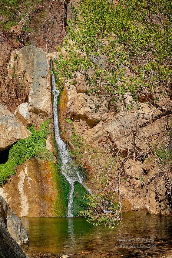 Darwin Falls, Inyo Mountains, California