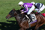 November 7, 2020 : Order of Australia, ridden by Pierre-Charles Boudot, wins the FanDuel Mile presented by PDJF on Breeders' Cup Championship Saturday at Keeneland Race Course in Lexington, Kentucky on November 7, 2020. Candice Chavez/Breeders' Cup/Eclipse Sportswire/CSM