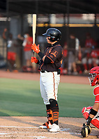 Diego Velazquez - San Francisco Giants 2021 extended spring training (Bill Mitchell)