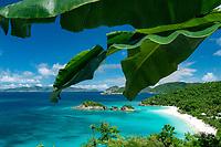 Trunk Bay St. John<br /> Virgin Islands National Park