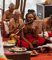 Hindu Temple Sri Vadapathira Kaliammam during Navarathiri Celebrations, Singapore.  Hindu Priest Reciting Prayers.