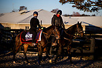 November 2, 2020: Equilateral, trained by trainer Charles Hills, exercises in preparation for the Breeders' Cup Turf Sprint at Keeneland Racetrack in Lexington, Kentucky on November 2, 2020. Alex Evers/Eclipse Sportswire/Breeders Cup