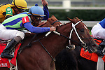 Grand Slam Andre with Shaun Bridgmohan (blue cap) duels with eventual winner, Backtalk and Miguel Mena at the top of the stretch in The Bashford Manor Stakes at Churchill Downs. 07.03.2009
