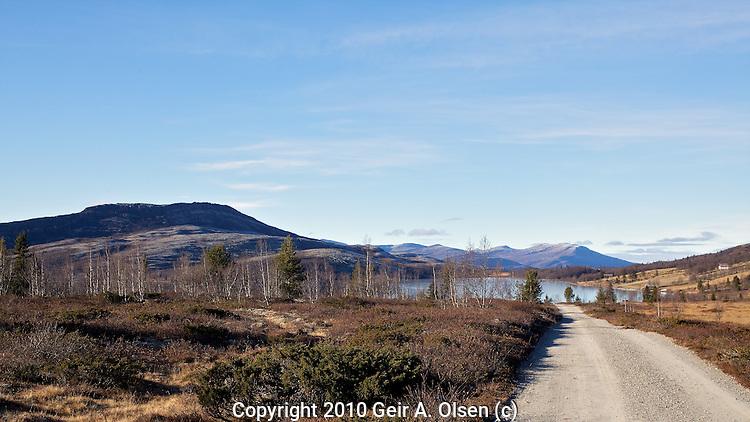 Autumn at Venabygdsfjellet in the Norwegian mountains close to Ringebu