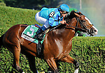 10 August 27: Get Stormy (no. 5), ridden by Javier Castellano and trained by Thomas Bush, wins the 52nd running of the grade 2 Bernard Baruch Handicap for three year olds and upward at Saratoga Race Track in Saratoga Springs, New York.
