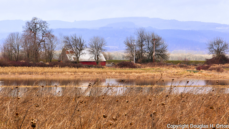 Red barn on pond with dike and distant hills.  Sauvie Island, Oregon, home of the Sauvie Island Wildlife Area, farming and beaches.  Sauvie Island Wildlife area hosts ducks, geese, swans, eagles, herons and multiple other bird species plus deer, fox, beavers and racoons.  A clothing optional swimming beach is along one shore line.  Great bicycling near Portland.