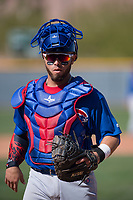 Chicago Cubs catcher Michael Cruz (8) during a Minor League Spring Training game against the Oakland Athletics at Sloan Park on March 19, 2018 in Mesa, Arizona. (Zachary Lucy/Four Seam Images)