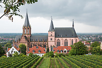 """Die Katharinenkirche in Oppenheim.<br /> Die Kirche gilt als eine der bedeutendsten gotischen Kirchen am Rhein zwischen Strassburg und Koeln. Ihre Errichtung erfolgte in Abschnitten im 13., 14. und 15. Jahrhundert.<br /> Die Kirche ist unteranderem fuer ihre Bleiglassfenster beruehmt, von denen viele noch im Original erhalten sind; so auch Fenster der """"Oppenheimer Rose"""".<br /> Bei Renovierungsarbeiten im Jahr 1959 wurde an der Suedseite der Fassade ein Portrait des damaligen Bundespraesidenten Theodor Heuss angebracht.<br /> Im Bild: Blick auf die Katharinenkirche von einem Weinberg.<br /> 30.8.2021, Oppenheim<br /> Copyright: Christian-Ditsch.de"""
