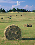 Osage County, MO<br /> Scattered hay bales on an open, rolling hill in summer near Freeburg