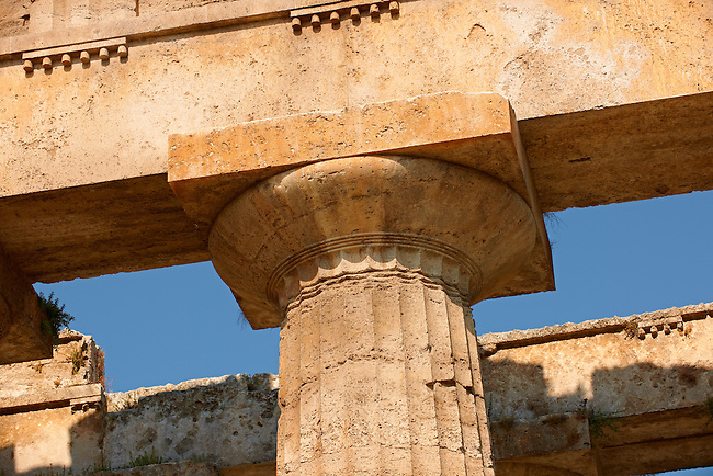 Close up of the ancient Doric Greek capitals & columns of the  Temple of Hera of Paestrum built in about 460-450 BC. Paestrum archaeological site, Italy.