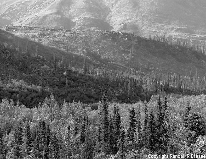 """""""Sunlit Hills of Tombstone Territorial Park"""" <br /> Yukon Territory, Canada<br /> <br /> Tombstone Territorial Park lies about 1.5 hours north of Dawson City on the Yukon's Dempster Highway. This black and white photo shows hills in the park illuminated nicely by sunlight."""