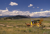 stage coach, Yellowstone National Park, WY, Tower Junction, Wyoming, Stage Coach Ride through the scenic countryside at Tower-Roosevelt in Yellowstone Nat'l Park in Wyoming.