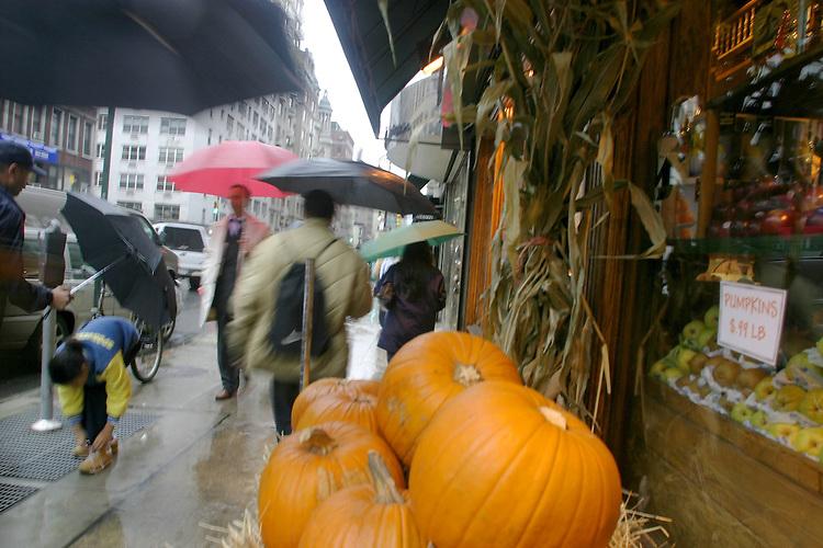 New York City, Manhattan, Pumpkins, Autumn, Lexington Avenue,