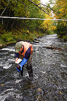 Hydrologist performs stream surveys in Cooper Creek, Kenai Peninsula, Chugach National Forest, Alaska.