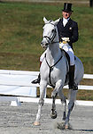 17 October 2008:  Former Olympian Bruce Davidson Sr., aboard Cruise Lion, sits in the top-20 after the dressage section of the Fair Hill International CCI*** Championship at Fair Hill Equestrian Center in Fair Hill, Maryland.  Dressage is the first stage of the three-day event.