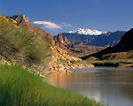 Fisher Towers along the Colorado River with the La Sal Mountains, Moab, Utah, USA