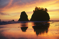 Seastacks at 2nd beach, from Lapush, Washington, Olympic National Park, Sunset.