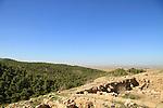 Tel Halif in Lahav Forest