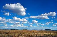 Karoo: AFRIKA, SUEDAFRIKA, NORTHERN CAPE, HANOVER, 16.01.2014: Landschaft in der Halbwueste Karoo, zentralen Hochebene des Landes Suedafrika, Highveld, Klein Karoo, Gross Karoo und Ober Karoo. Klima arid, trocken, im Luv der Berge, kaum Niederschlaege. Bewohner sind die San die dem Land den Namen Kuru geben, trocken ist die Bedeutung
