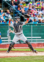 25 July 2017: Tri-City ValleyCats catcher Michael Papierski, a 9th round draft pick for the Houston Astros, in action against the Vermont Lake Monsters at Centennial Field in Burlington, Vermont. The Lake Monsters defeated the ValleyCats 11-3 in NY Penn League action. Mandatory Credit: Ed Wolfstein Photo *** RAW (NEF) Image File Available ***