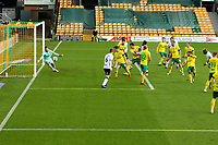 7th November 2020; Carrow Road, Norwich, Norfolk, England, English Football League Championship Football, Norwich versus Swansea City; André Ayew of Swansea City hits the post