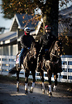 Madone, trained by Simon Callaghan, exercises in preparation for the Breeders' Cup Juvenile Fillies Turf at Keeneland 11.03.20.