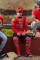 Greenville Drive catcher Tim Roberson #15 in the bullpen during practice before a game against the Lexington Legends on April 18, 2013 at Whitaker Bank Ballpark in Lexington, Kentucky.  Lexington defeated Greenville 12-3.  (Mike Janes/Four Seam Images)