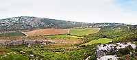 Domaine d'Aupilhac. Montpeyroux. Languedoc. Garrigue undergrowth vegetation with bushes and herbs. Mont Baudile and the plateau. Les Cocalieres recently planted magnificent vineyard plot on the hill slope. France. Europe. Vineyard. Mountains in the background.