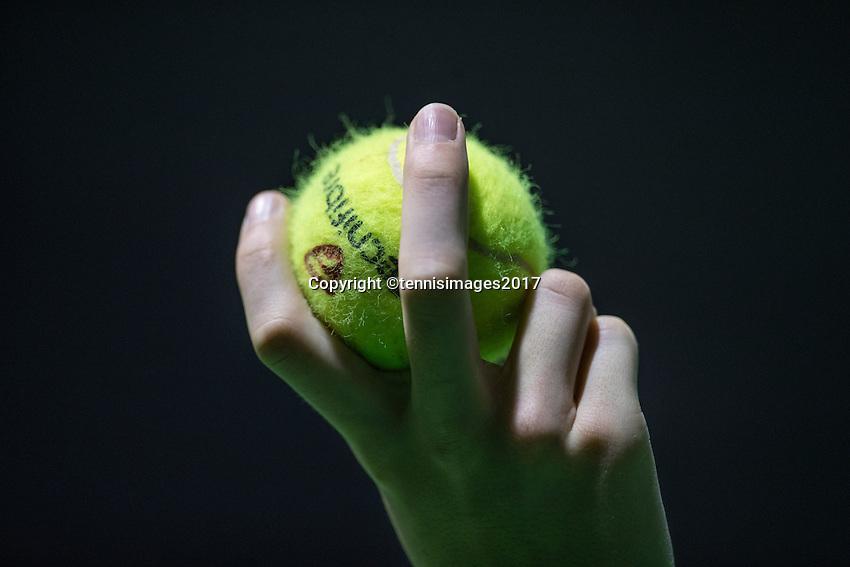 Rotterdam, Netherlands, 11 februari, 2017, ABNAMROWTT,  Qualyfying round,Ballboy holding tennisbal
